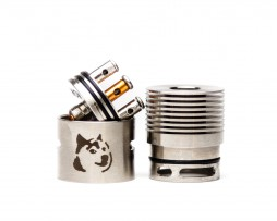 Doge Competition RDA